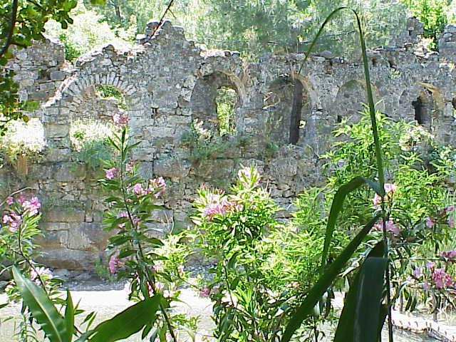 Oleander & ruins               Olympos
