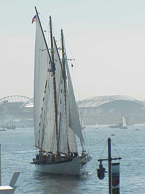 Schooner, Zodiac  Tall Ships Festival     Seattle