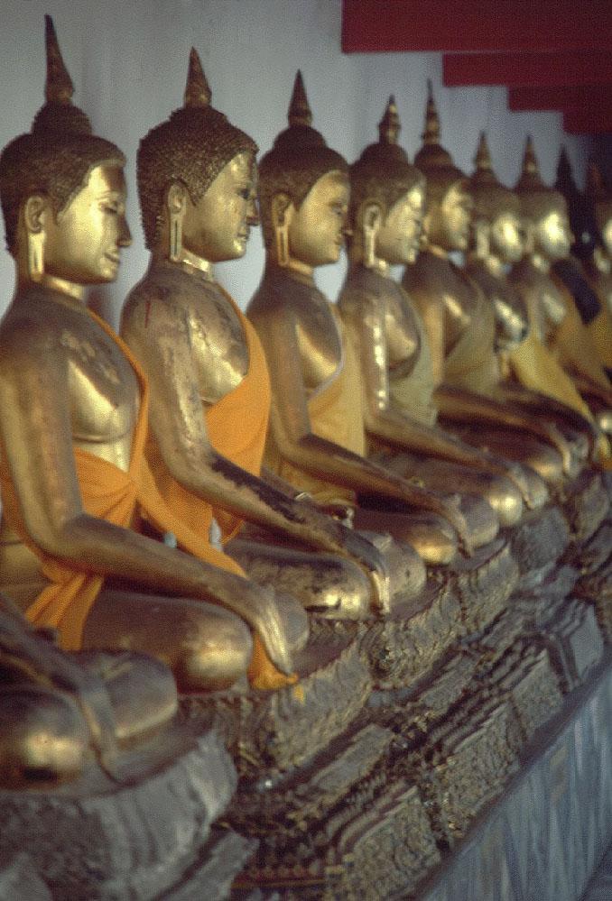 Row of Buddhas  BANGKOK