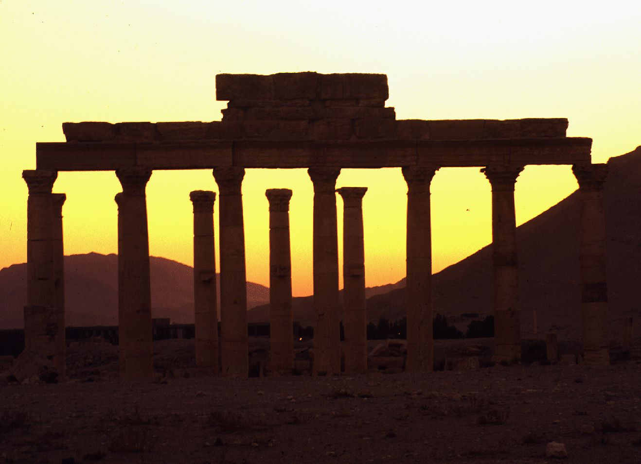 Sunset  Palmyra