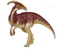 Parasaurlopholus