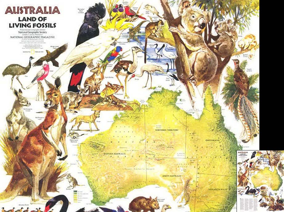 Map - 1979 - Australia: Land of Living Fossils<br>29 1/2 x 22 5/8