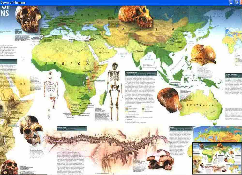 Map - 1997 - Human  Evolution - National Geographic