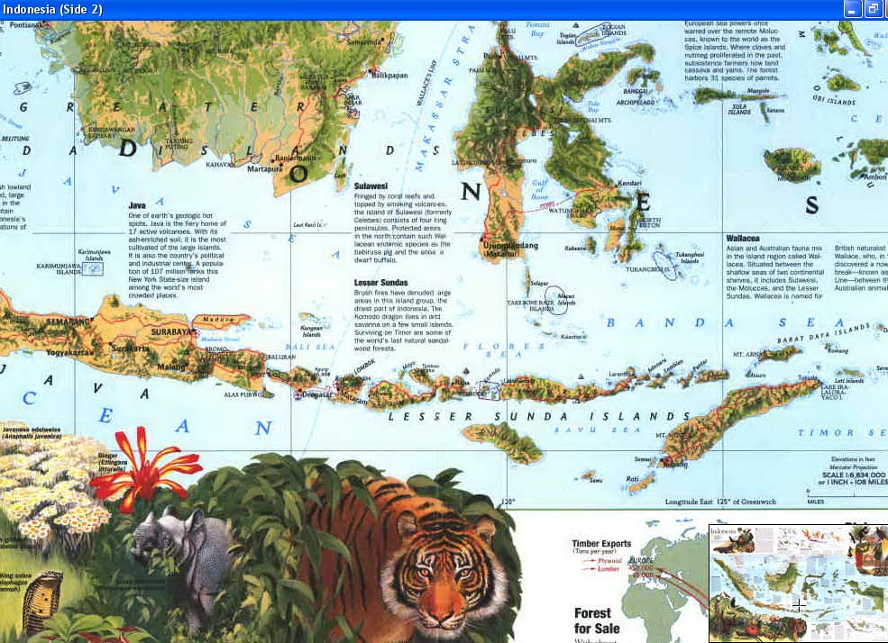 Map - 1996 - Indonesia <br>20 1/4 x 31 1/4